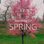 Spring, is that you?….finally?